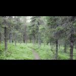 IMG_5517-Edit